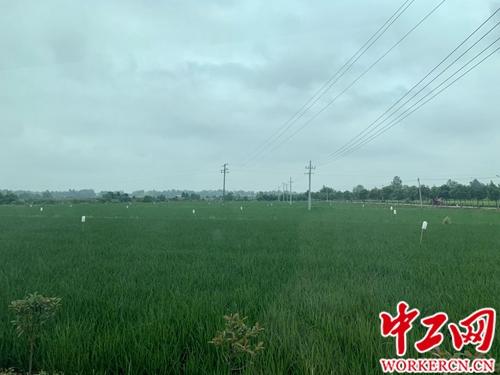 http://www.110tao.com/dianshanglingshou/606315.html